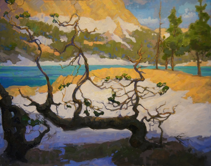 Gnarly Pine, Horseshoe Lake by Peter Adams