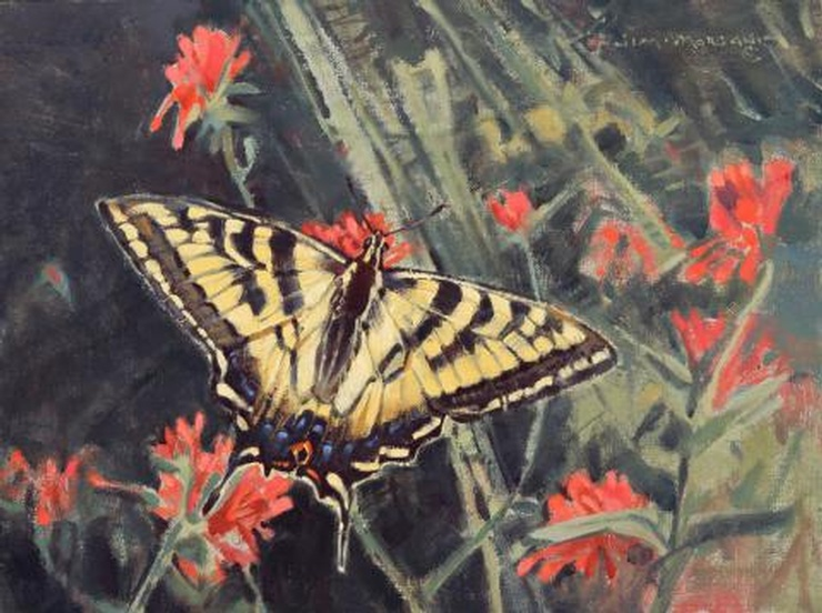Paintbrush with Western Tiger Swallowtail by Jim Morgan