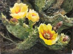 Prickly Pear Blossoms  - Oil on Linen - 12x16