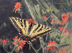 Paintbrush with Western Tiger Swallowtail - Oil - 9x12